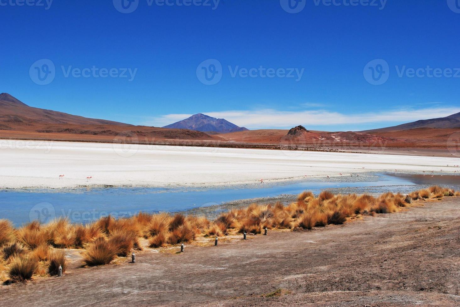 salar de unyuni, paesaggio desertico, bolivia foto