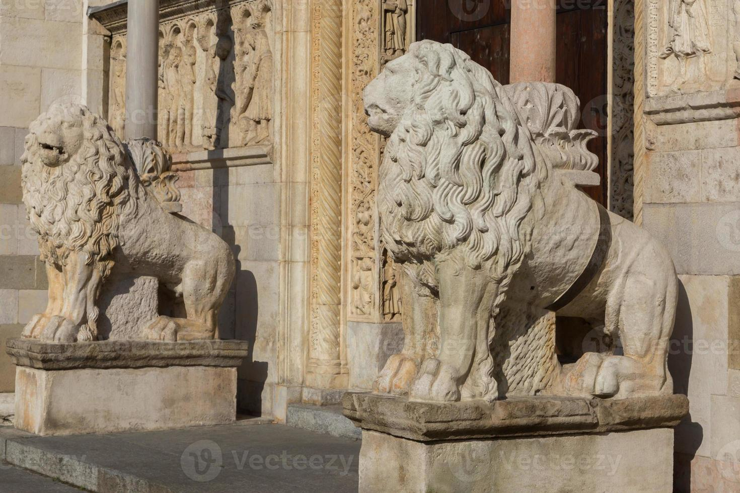 statua di leoni foto