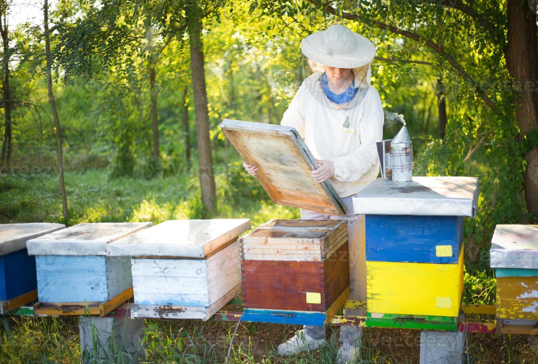 apicoltore che controlla le sue api. foto