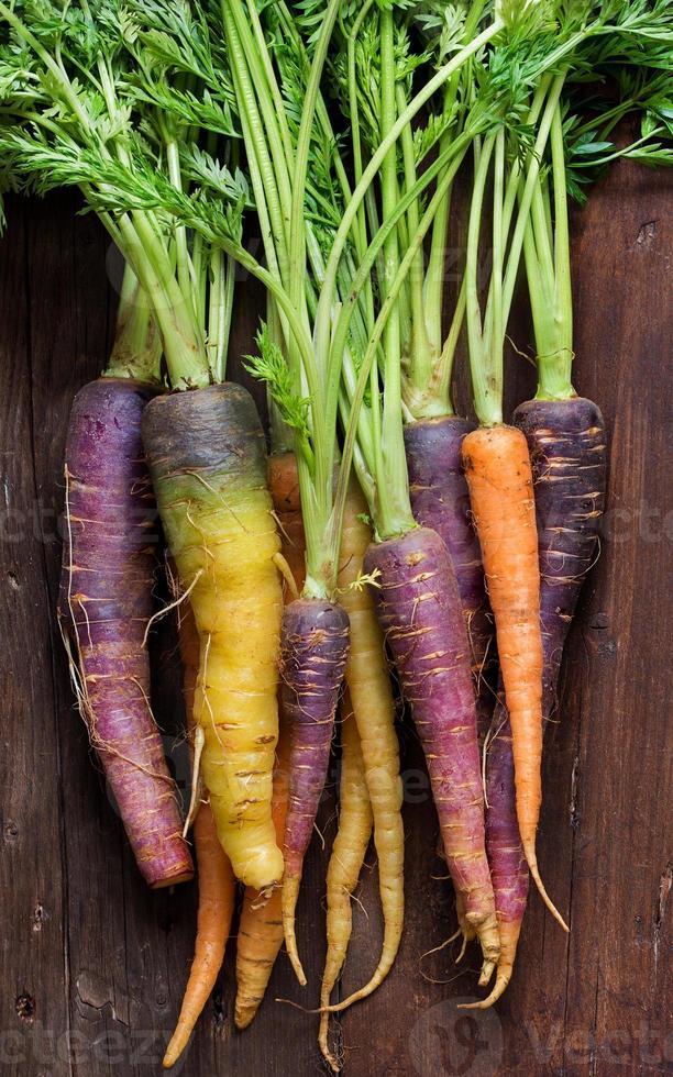 carote fresche arcobaleno organico foto