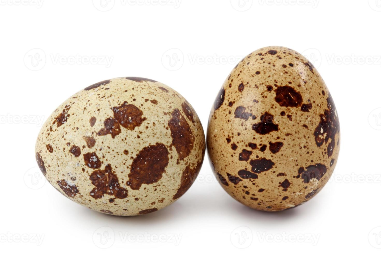 uova di quaglia comuni foto