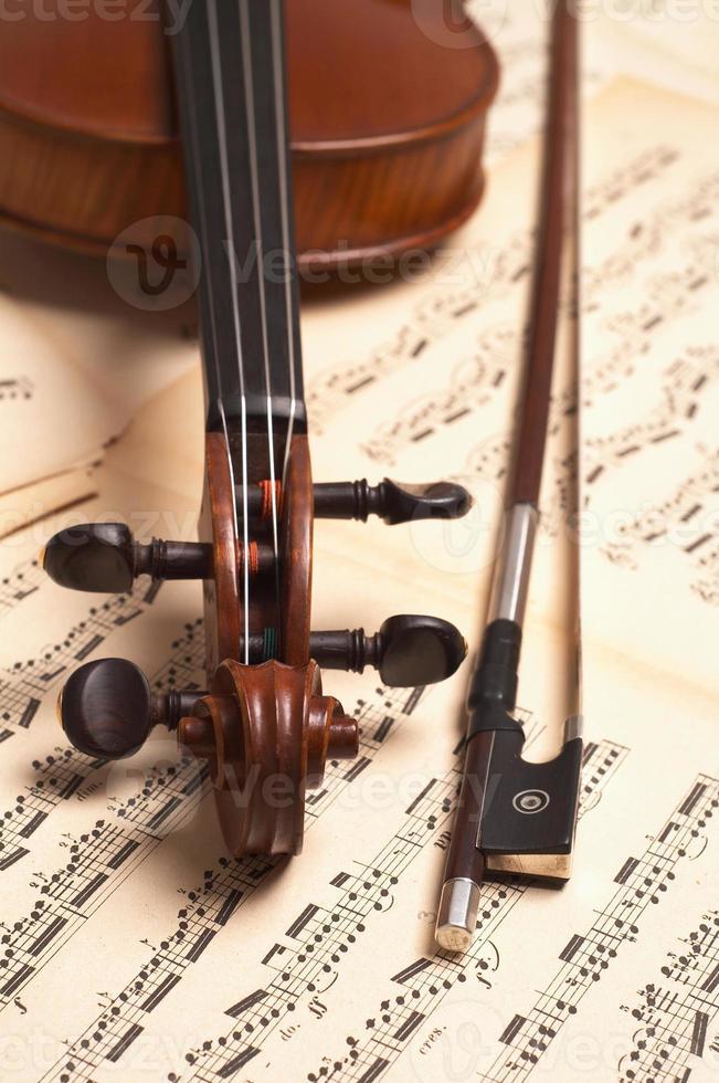testa di violino foto