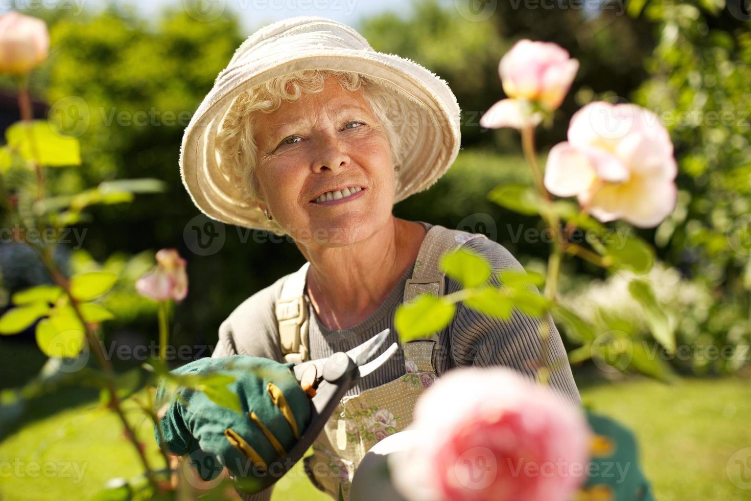 donna senior che lavora in giardino foto