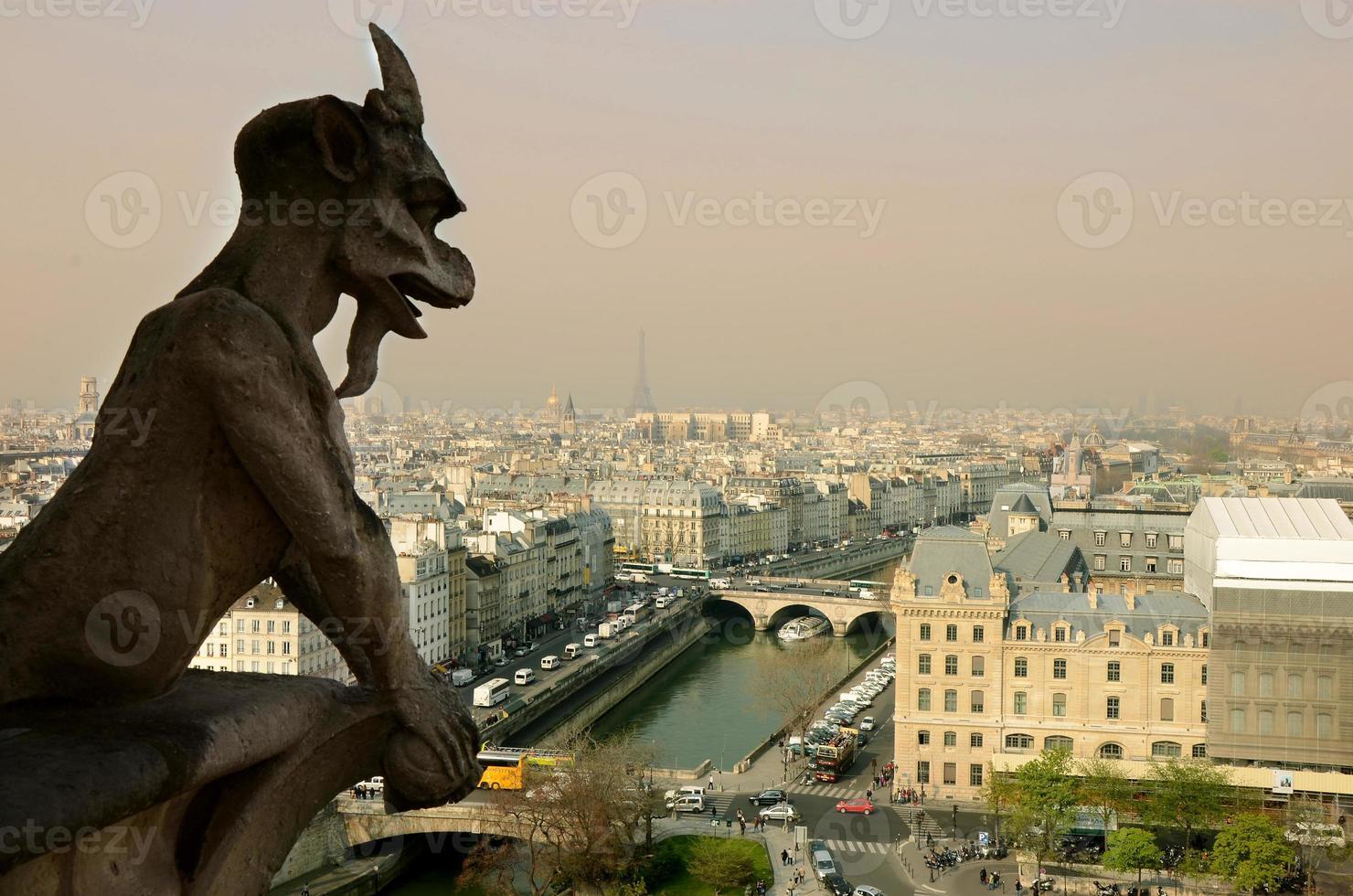 vista di Parigi dalla cattedrale di Notre-Dame foto