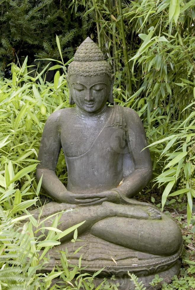 statua di un buddha foto