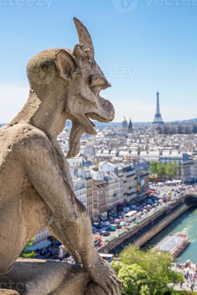 doccione Parigi foto