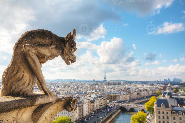 vista aerea di Parigi con la chimera foto
