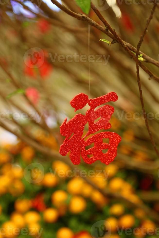 simbolo cinese tradizionale per l'arrivo di buona fortuna foto