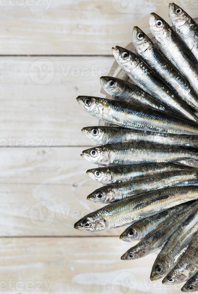 cinque sardine foto