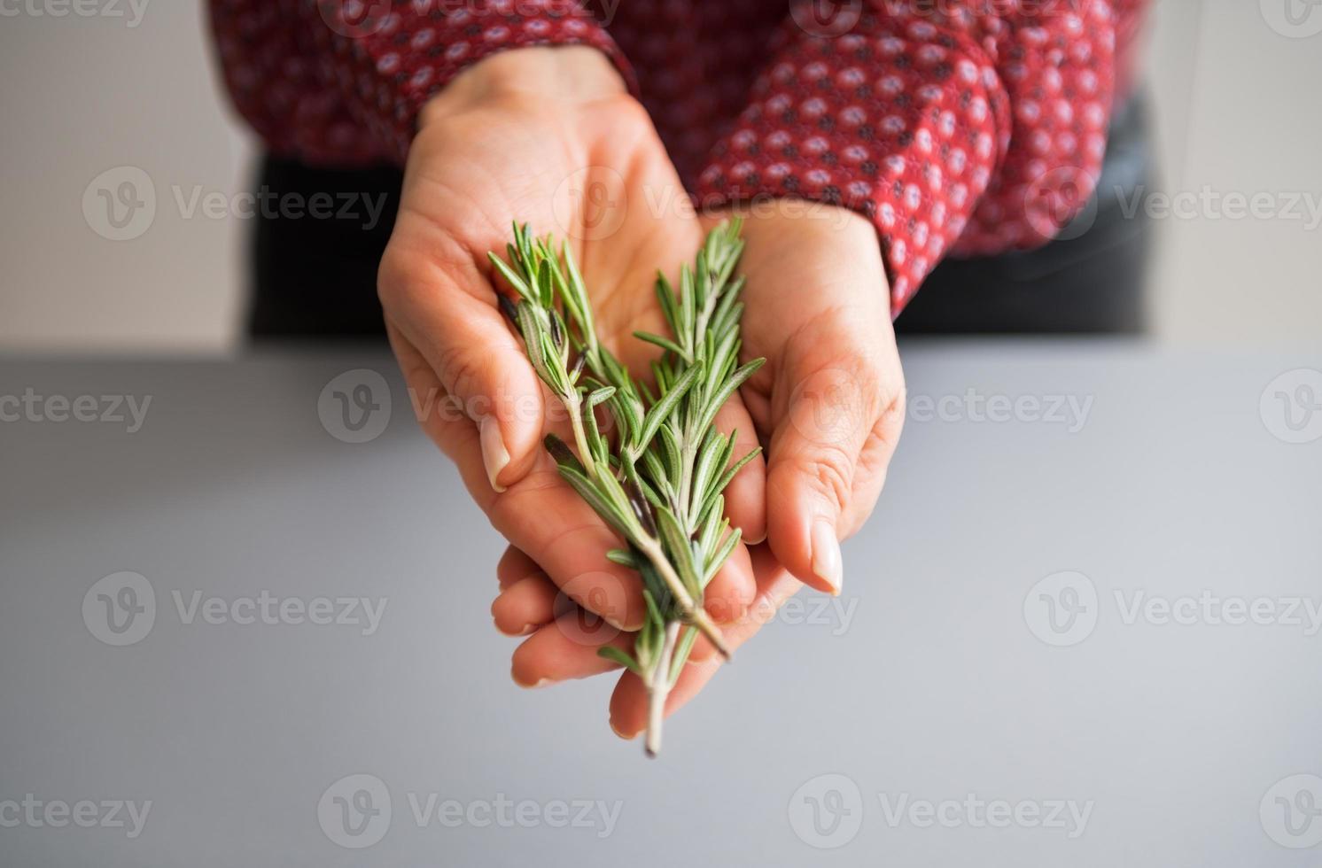 primo piano sulla giovane casalinga che mostra rosmarinus fresco foto