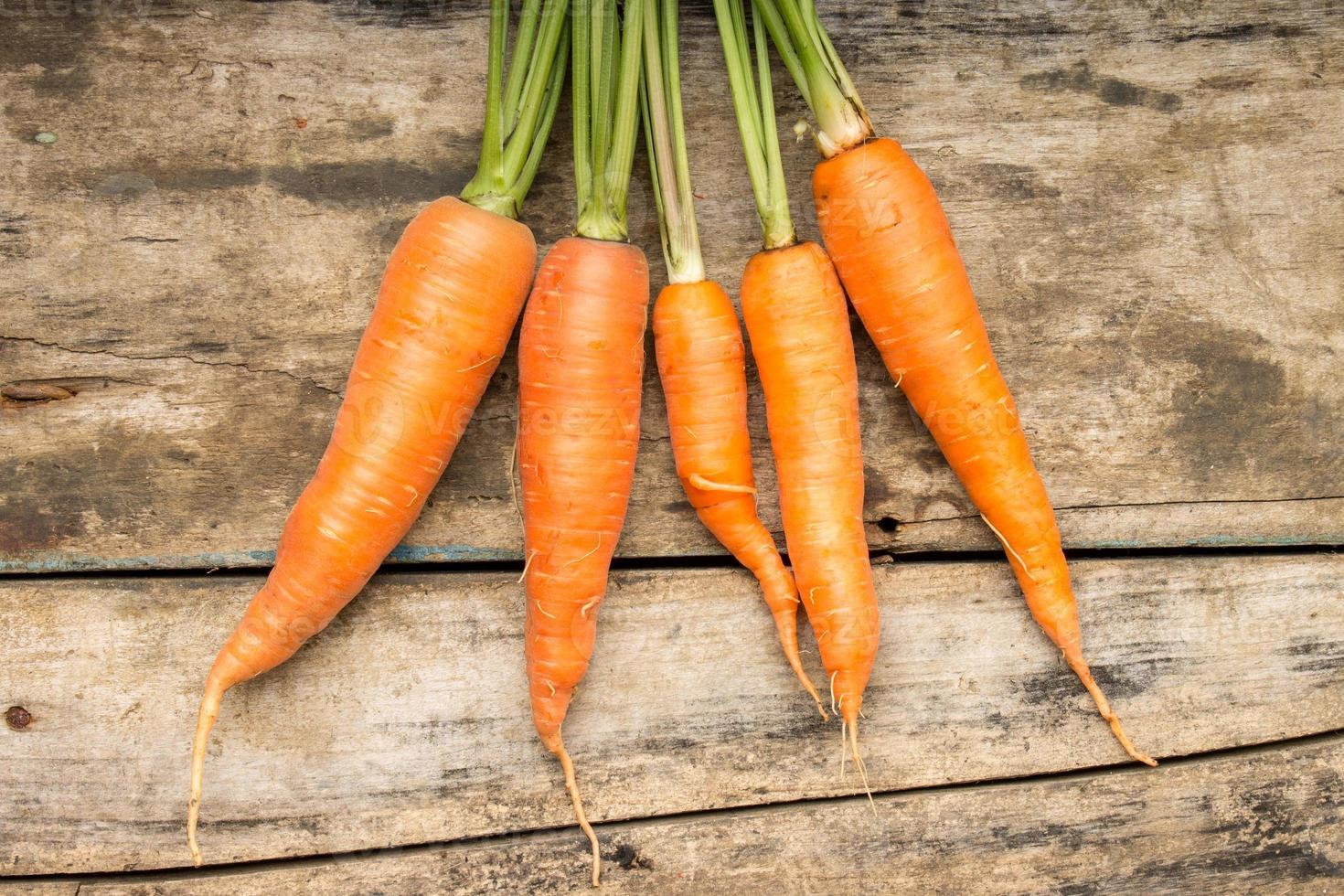 carote mature fresche che si trovano sul fondo di legno foto