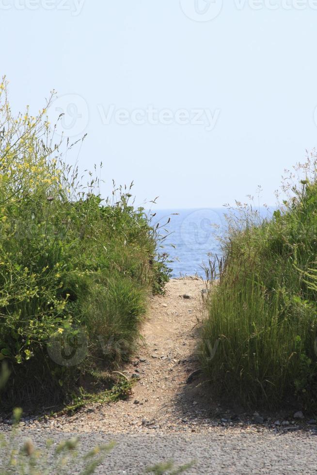 percorso per la spiaggia foto