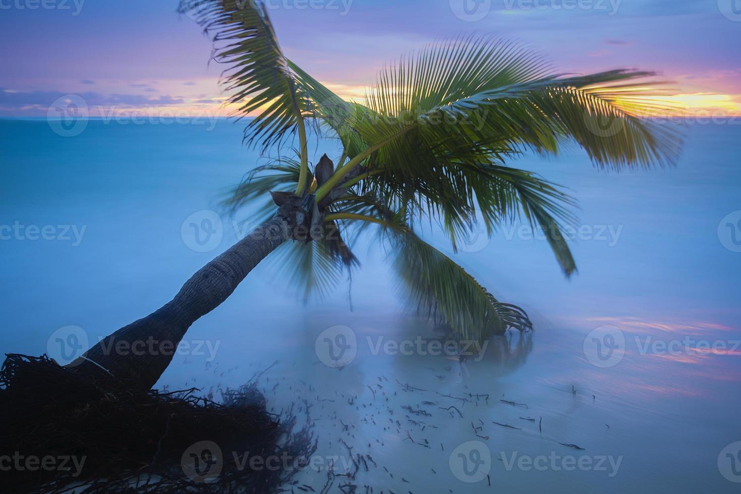 spiaggia caraibica. foto