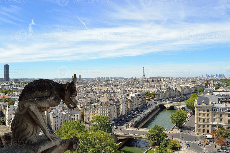doccione di notre dame, Parigi foto