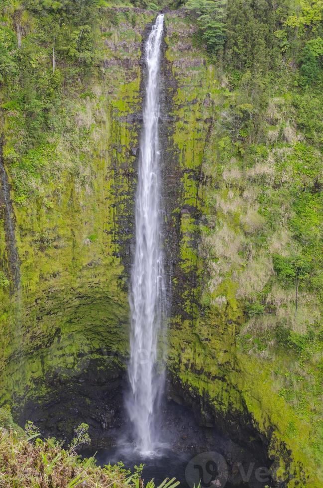Akaka cade sulla grande isola delle Hawaii. foto