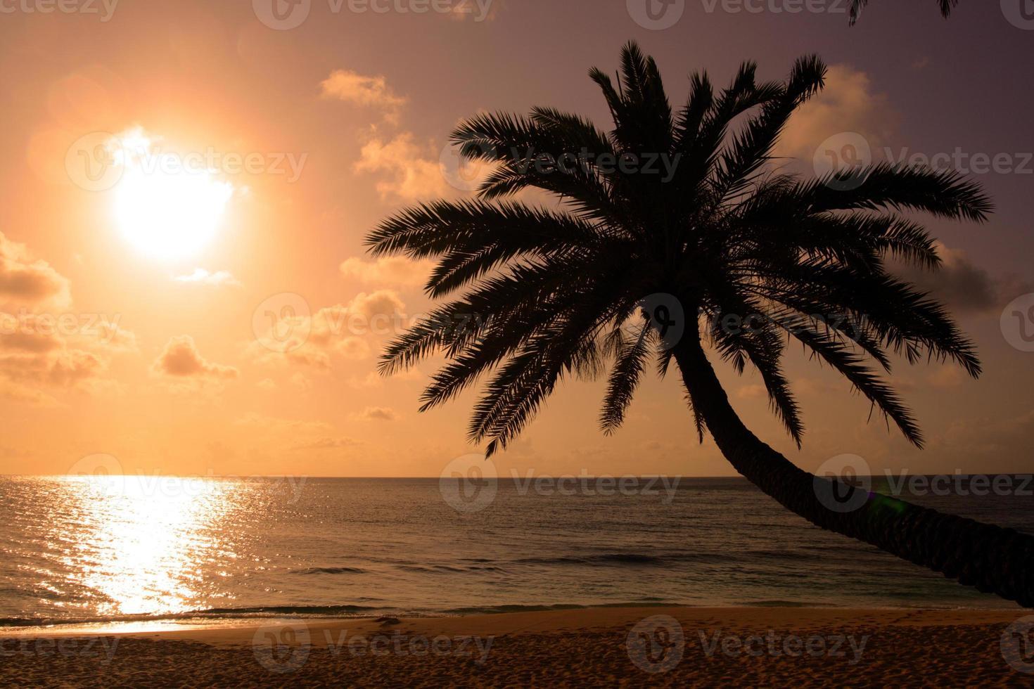 Sunset Beach, O'Hahu, Hawaii foto