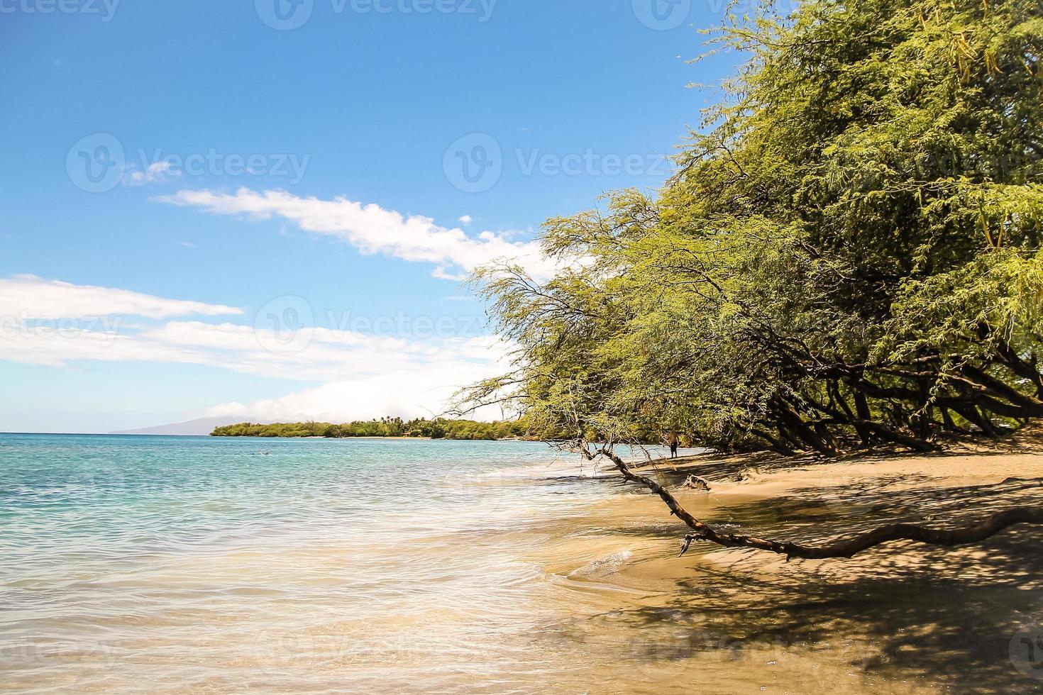 bellissima spiaggia di Maui foto