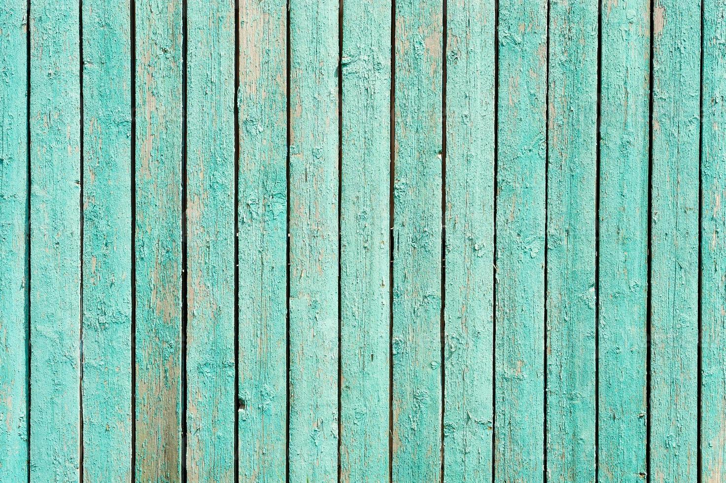 sfondo verde recinzione in legno foto