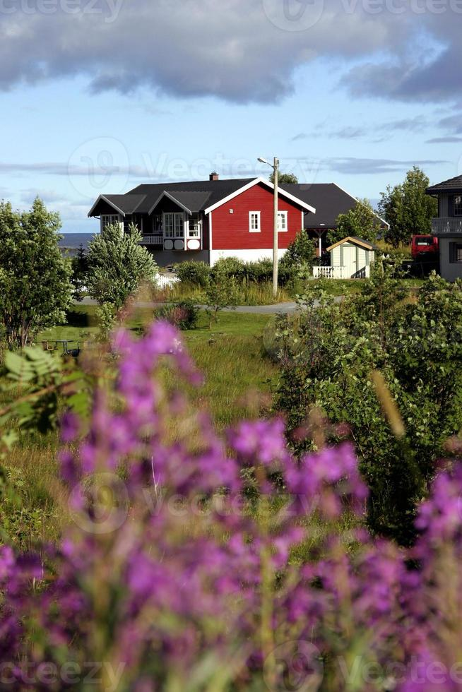 norvegia isole lofoten foto