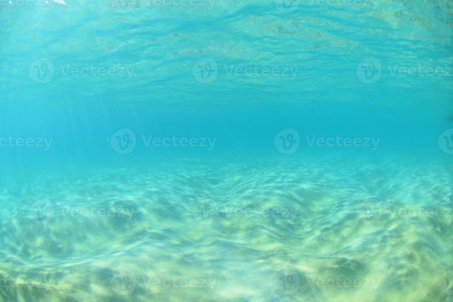 Makena reef foto
