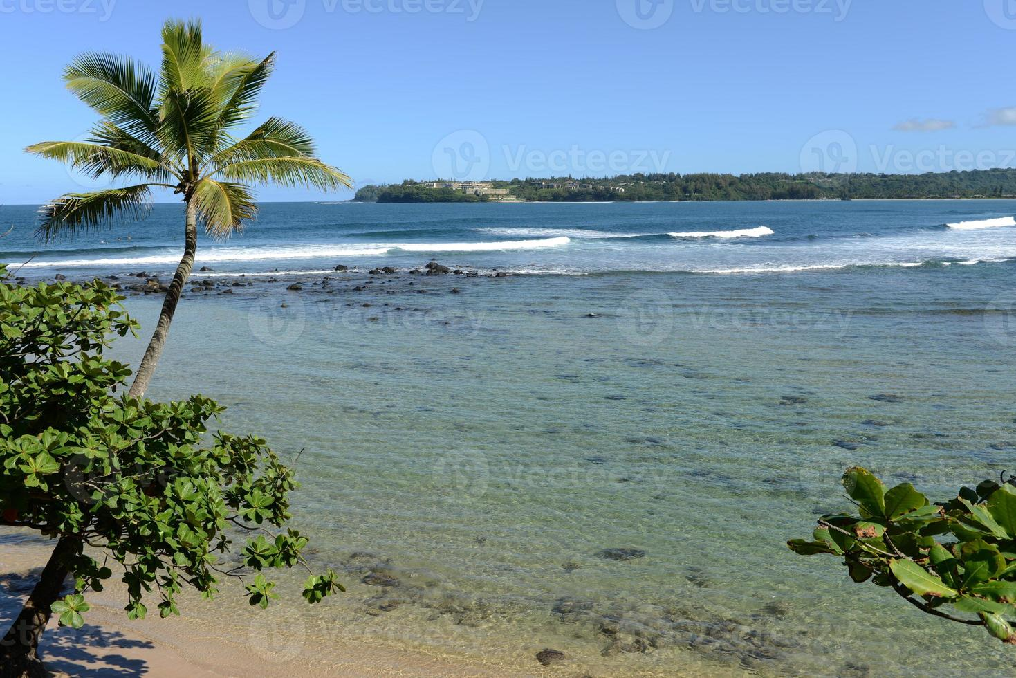 costa tropicale foto
