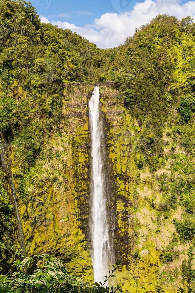 Akaka Falls, Hawaii foto