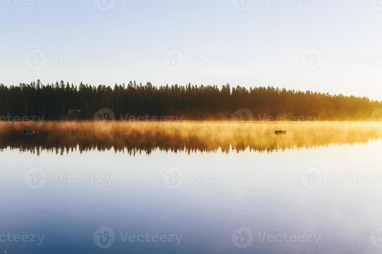 nebbia mattutina. foto
