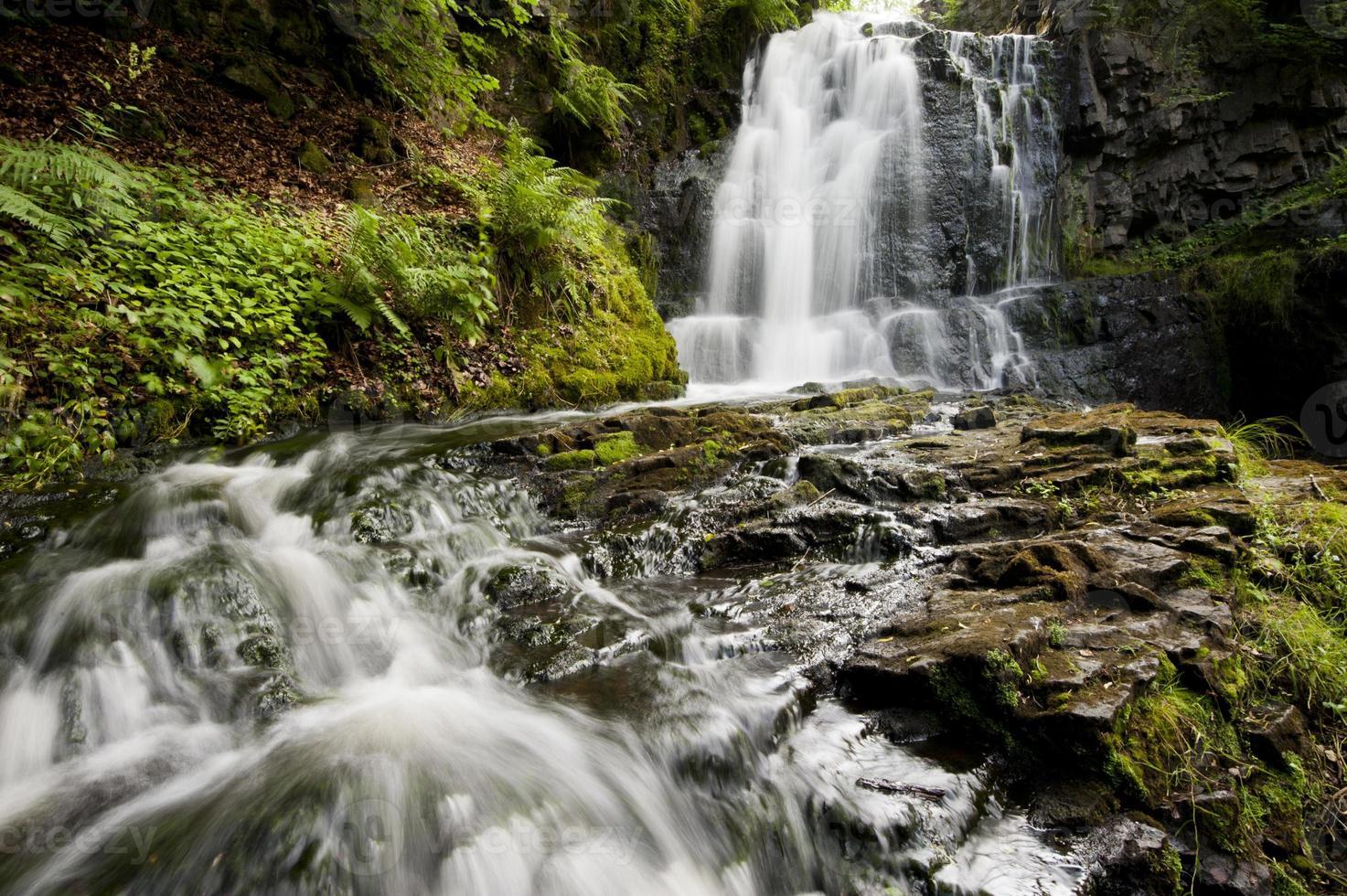 cascata tropicale foto