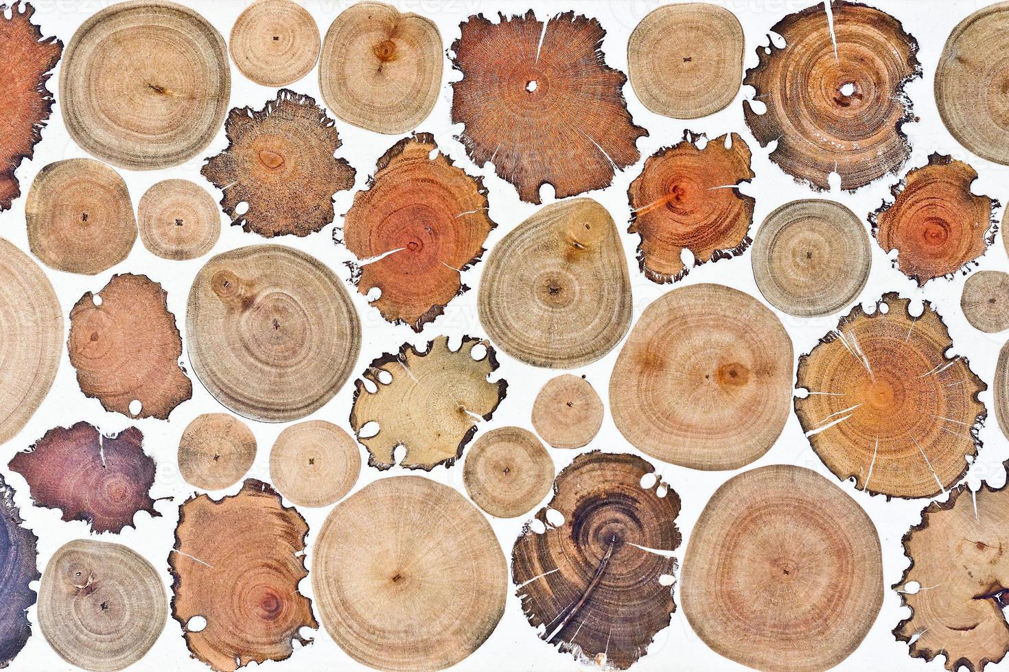 trama di ceppo di legno foto