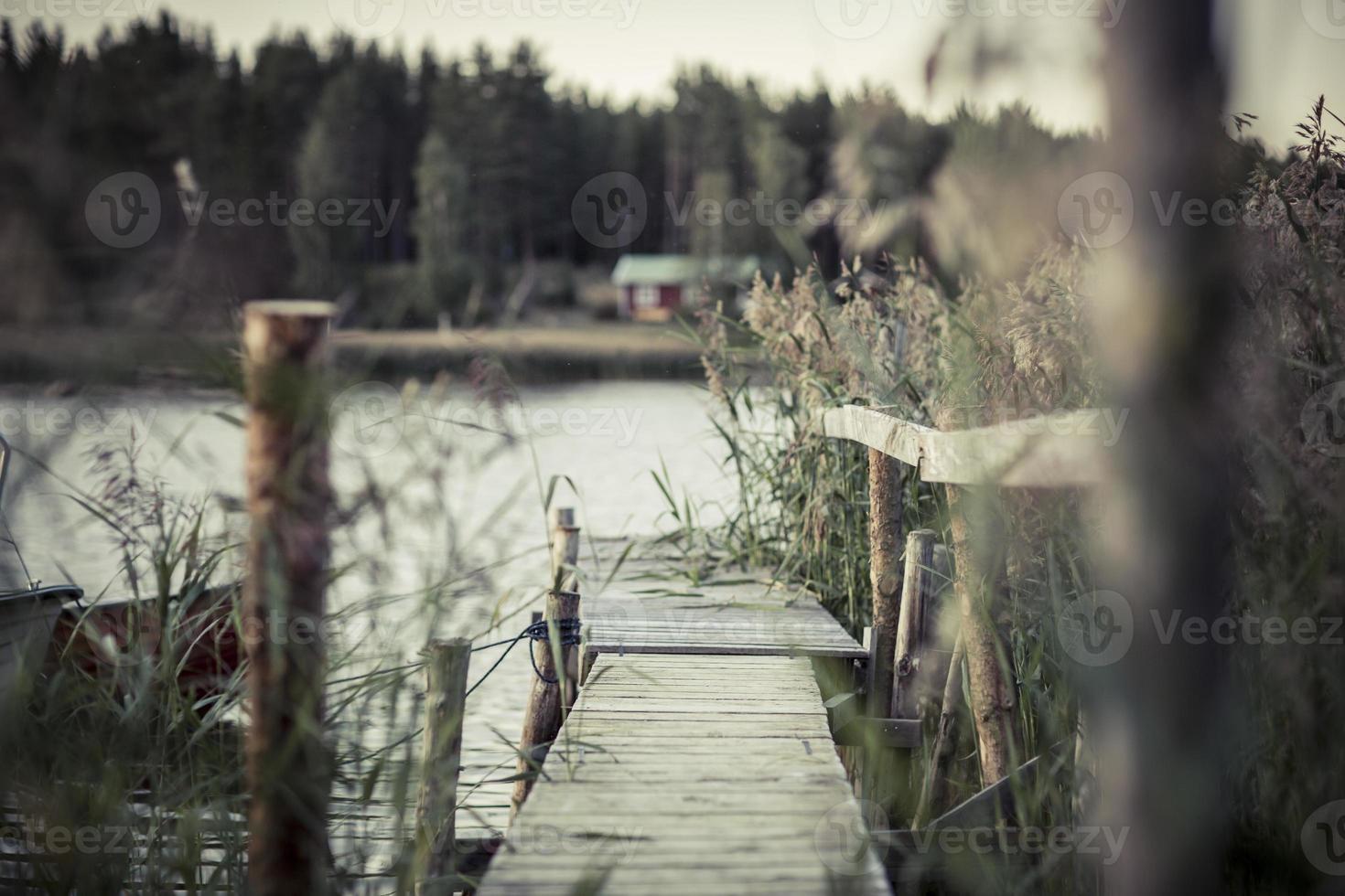 erba svezia in primo piano, lago e pontile 4 foto