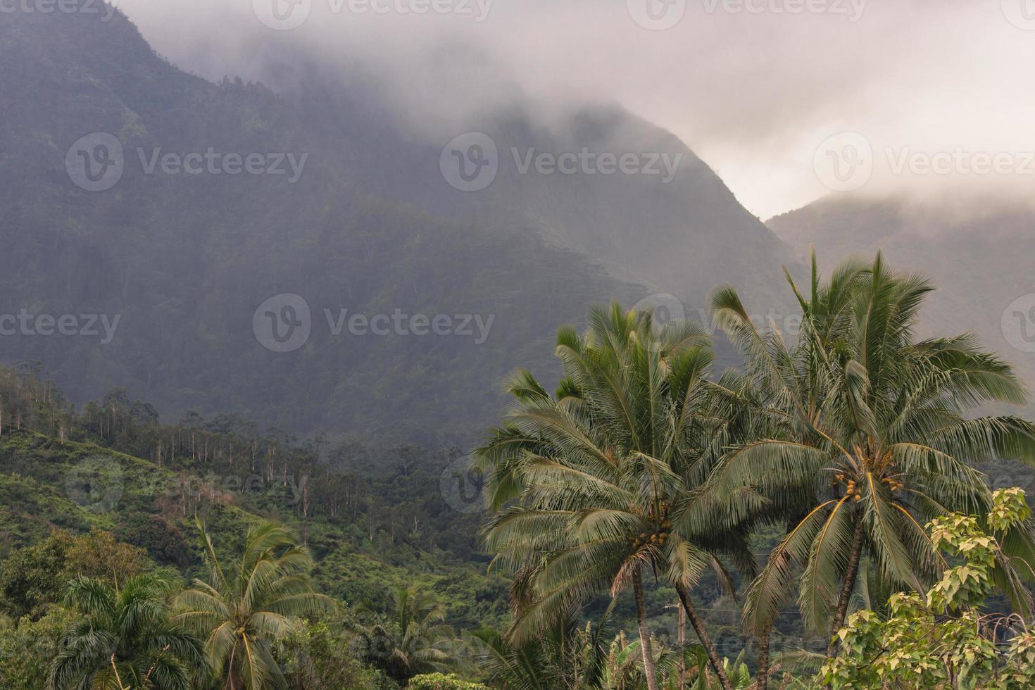 vista che domina hanalei su Kauai, Hawaii foto