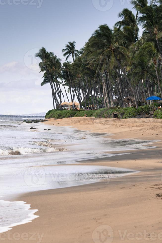 kaanapali beach, maui hawaii destinazione turistica foto