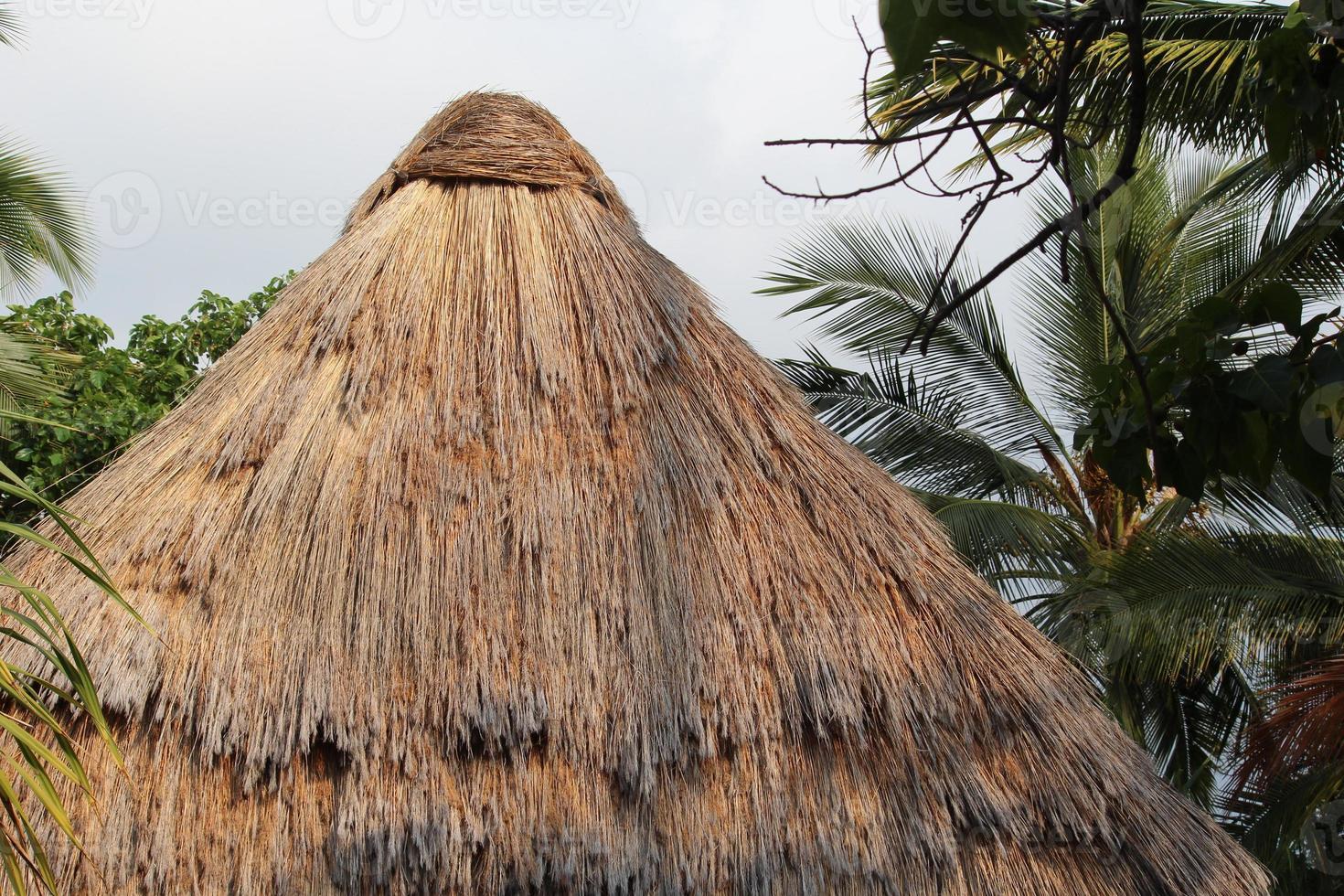capanna hawaiana foto