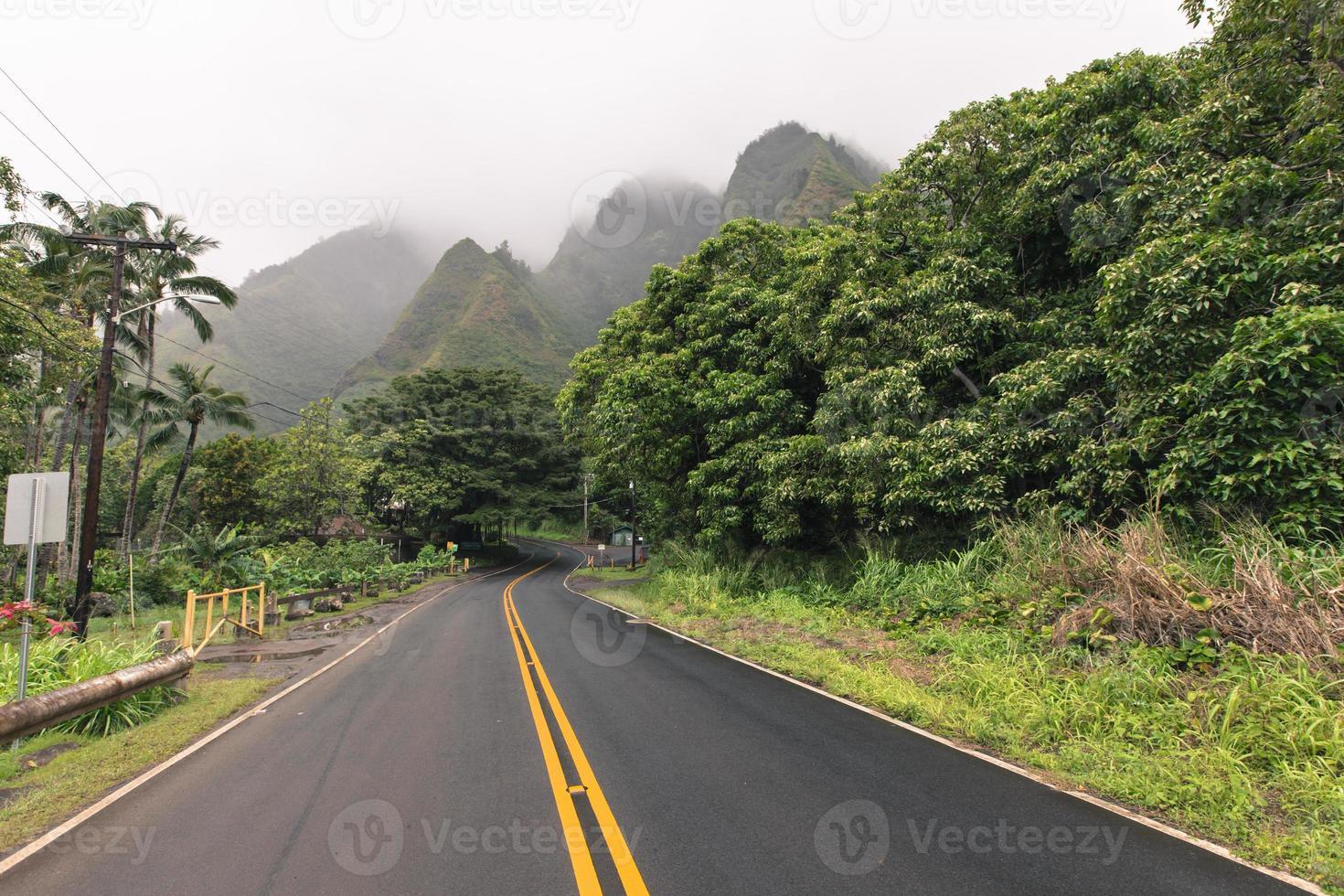 Parco di stato della valle di iao su Maui Hawai foto
