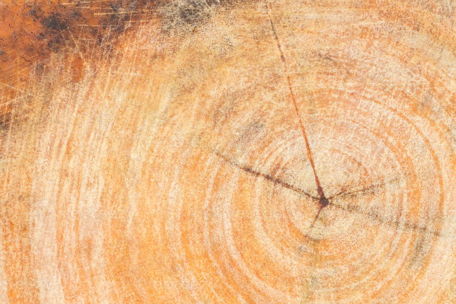 struttura di legno con fondo antigraffio foto