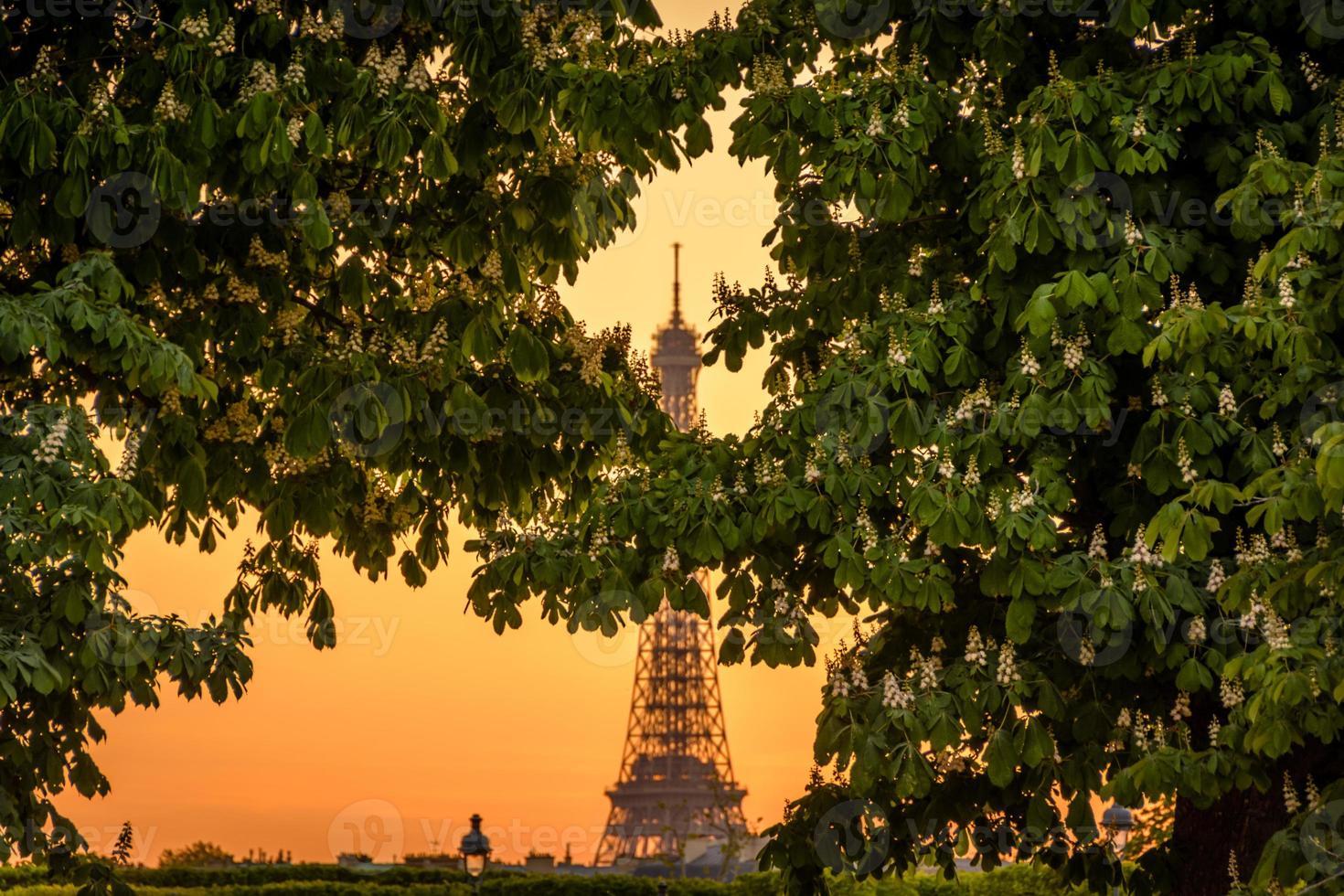 Parigi - città romantica foto