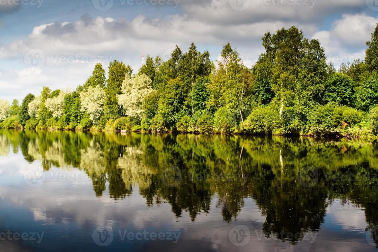 riflessioni della foresta sul fiume foto