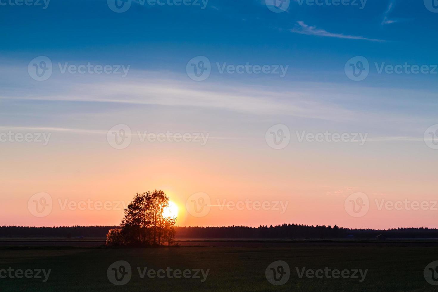 tramonto dietro gli alberi foto