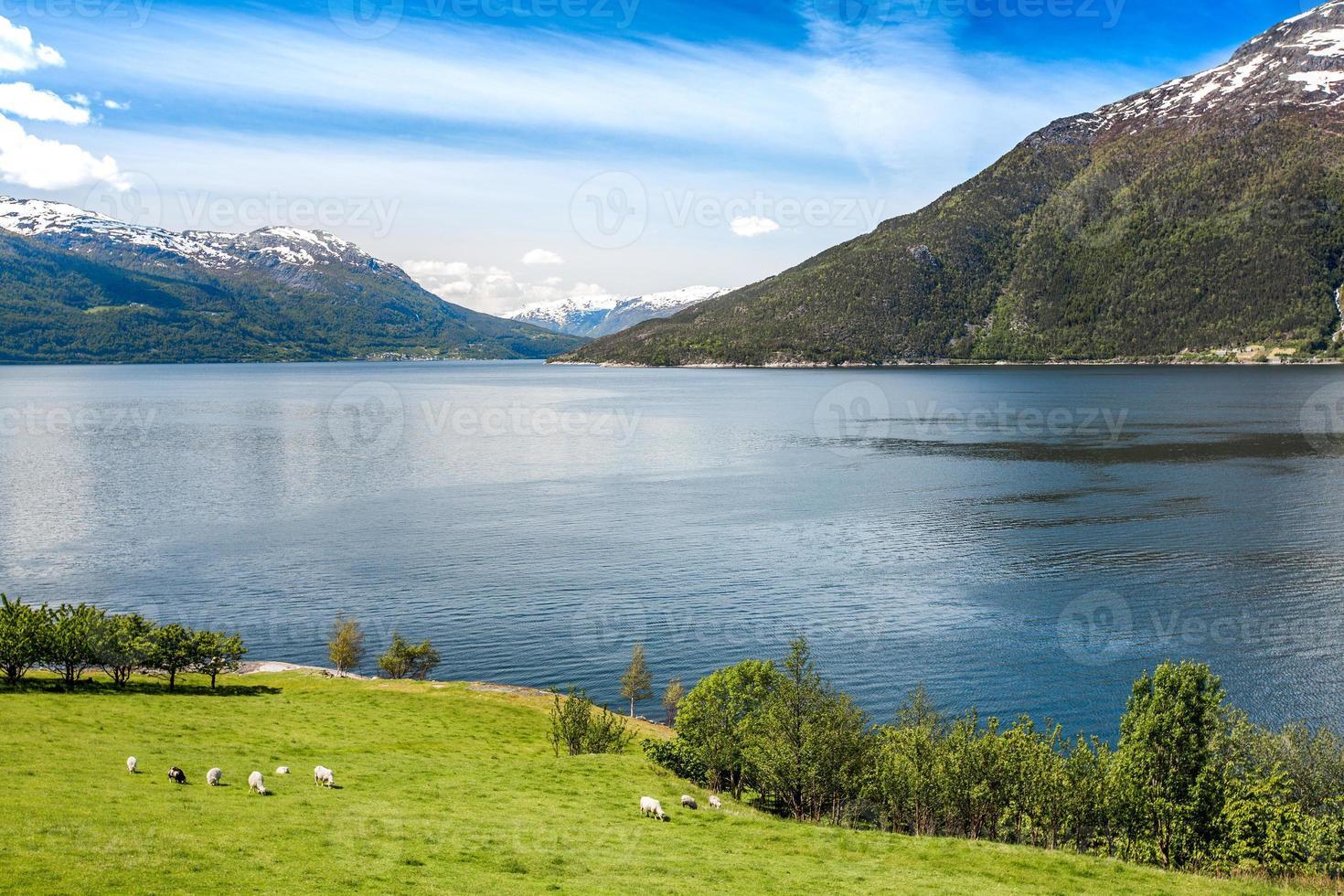 bellissima natura norvegia. foto