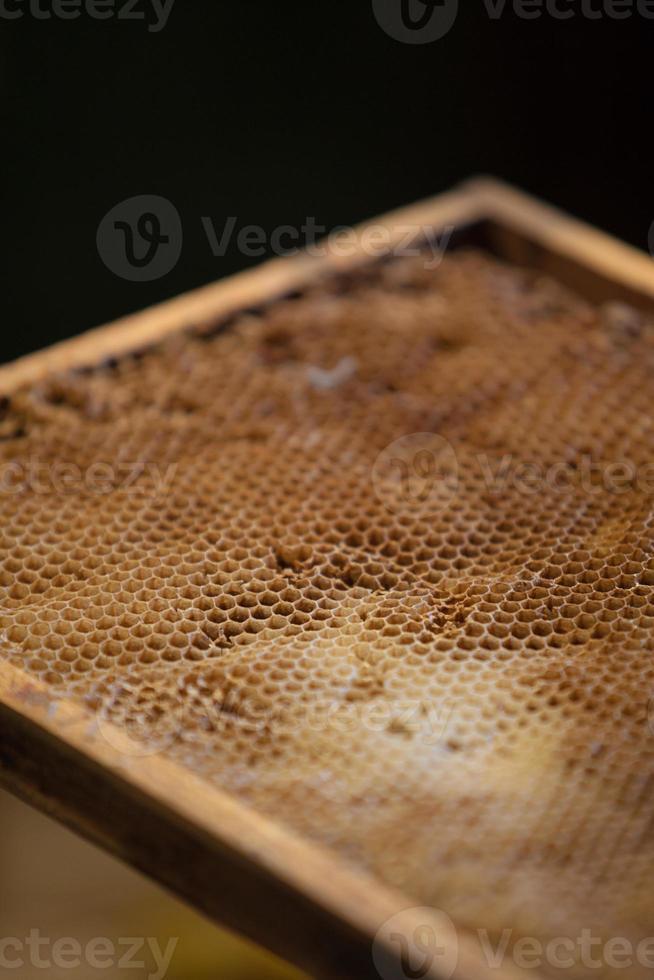 primo piano a nido d'ape foto