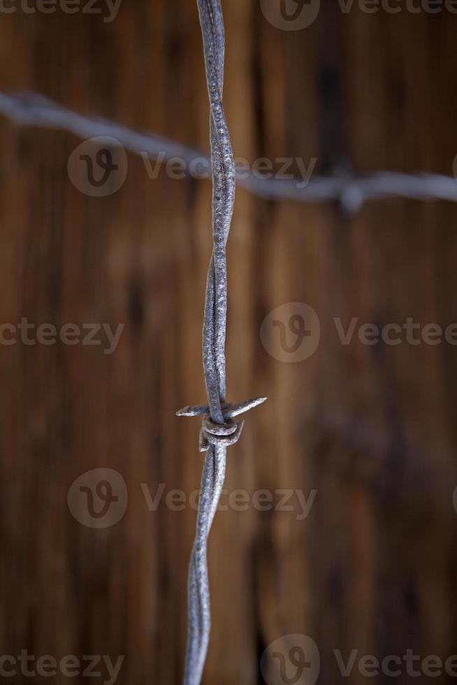 crocifisso in filo spinato foto
