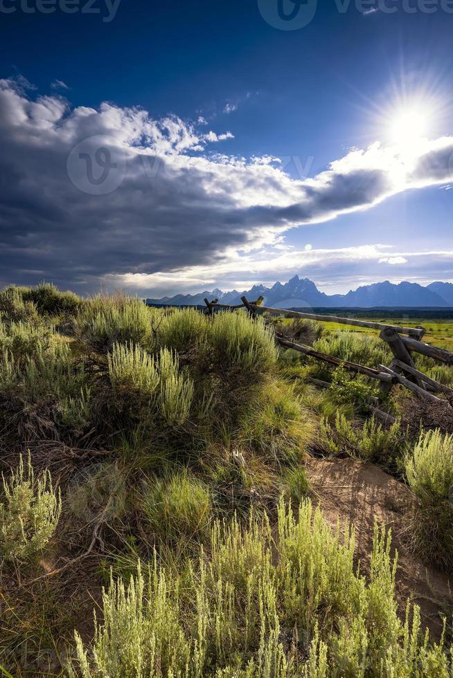 nel tardo pomeriggio nella prateria del Wyoming foto