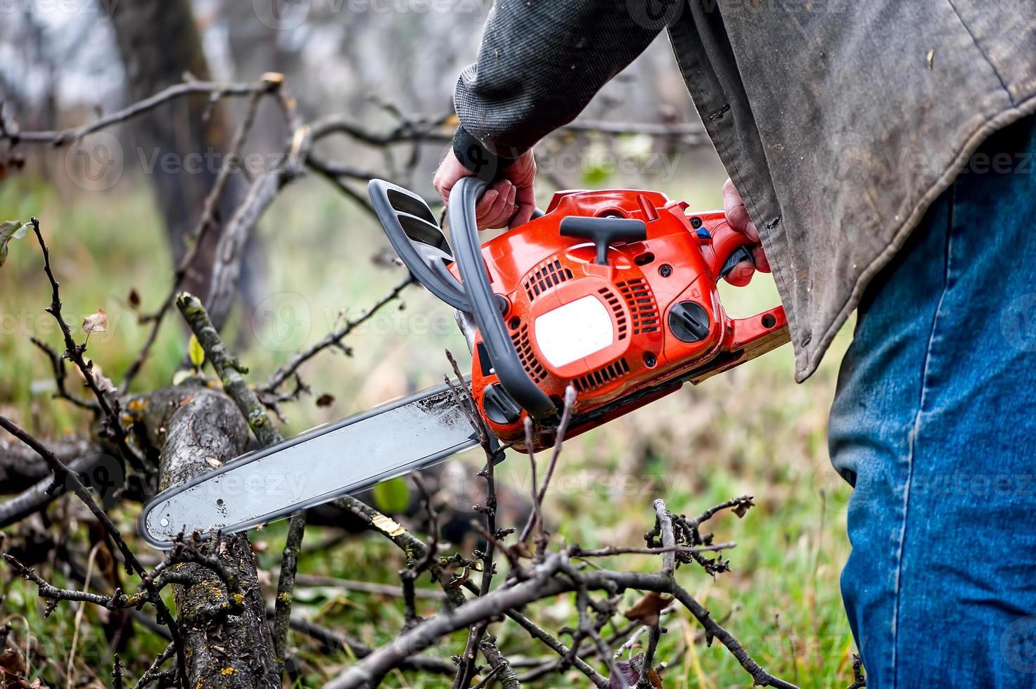 boscaiolo lavoratore, un uomo che taglia legna da ardere nella foresta foto