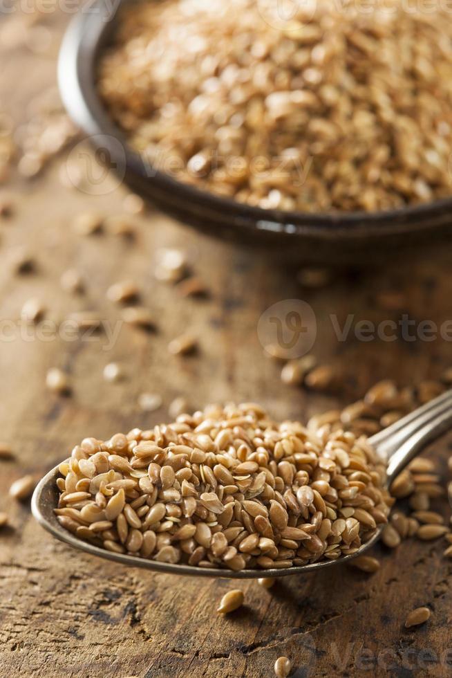 semi di lino grezzi biologici foto