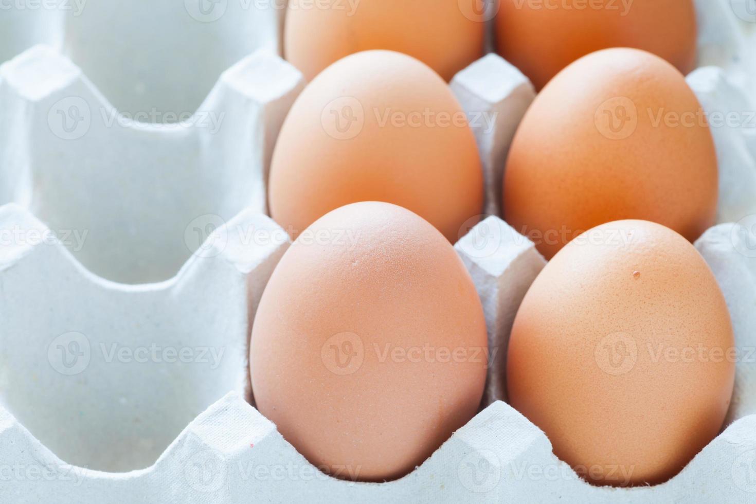 uovo di gallina marrone foto
