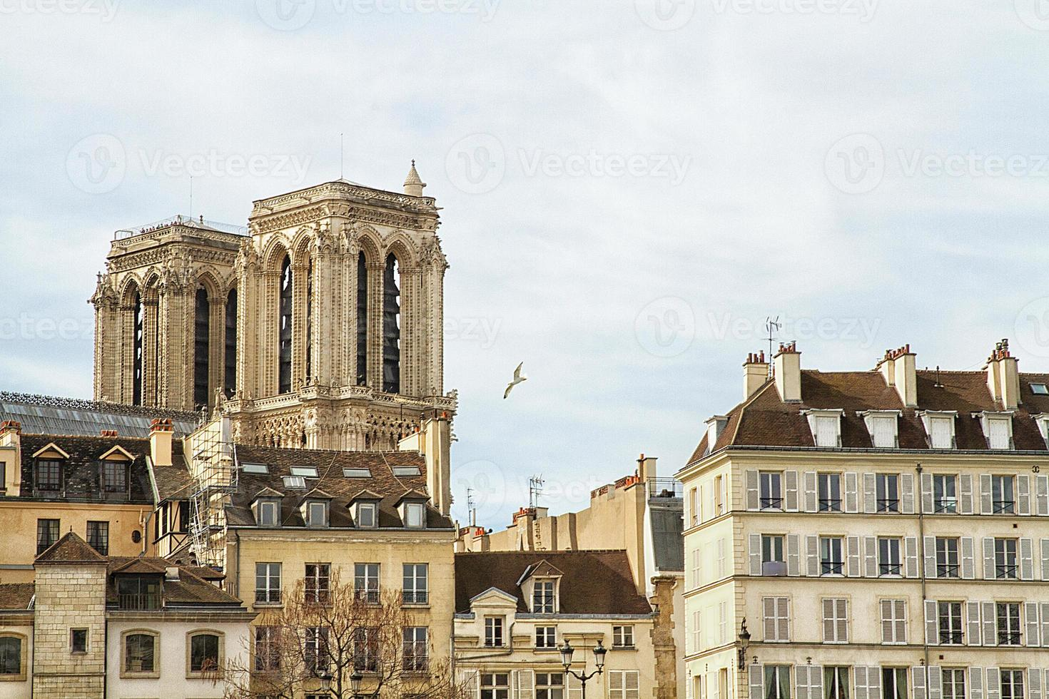 cattedrale notre-dame de paris vista dalla senna foto