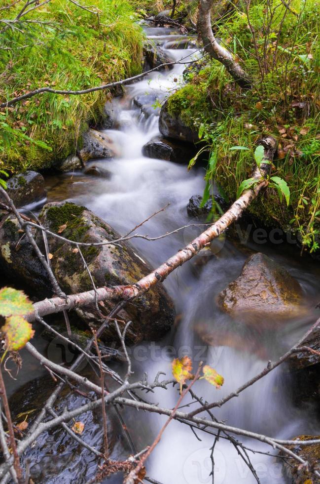 flusso nebbioso foto