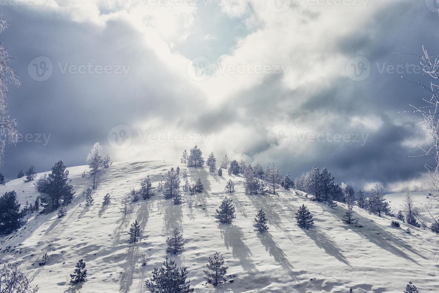 collina coperta di neve foto