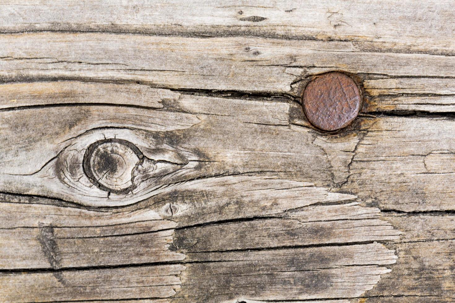 fondo di legno con chiodo arrugginito foto
