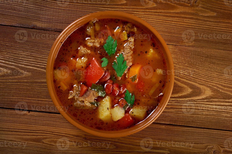 eintopf - piatto tradizionale di cucina tedesca. foto